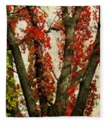 Autumn Red Fleece Blanket