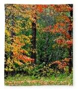 Autumn Fleece Blanket