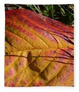 Autumn Saga Fleece Blanket