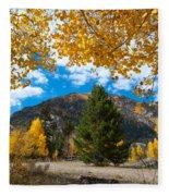 Autumn Scene Framed By Aspen Fleece Blanket