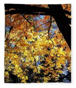 Autumn Splendor 3 Fleece Blanket
