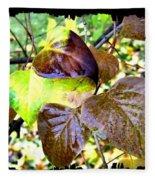 Autumn Splendor 4 Fleece Blanket