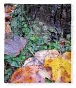 Autumn Tree Trunk  Fleece Blanket
