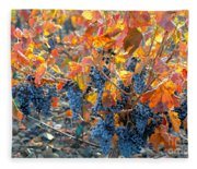 Autumn Vineyard Sunlight Fleece Blanket