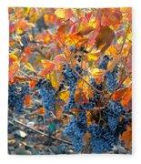 Autumn Vineyard Sunlight Fleece Blanket
