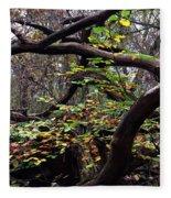 Autumn Wild Nature Denmark Fleece Blanket