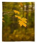 Autumns Fast Approach Fleece Blanket