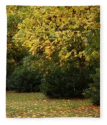 Autumn's Wondrous Colors 4 Fleece Blanket
