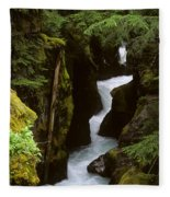Avalanche Creek Glacier National Park Fleece Blanket
