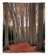 Avenue Of Plain Trees Fleece Blanket