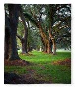 Avenue Of The Oaks On St Simons Island Ga Fleece Blanket