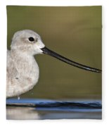 Avocet Feeding Fleece Blanket