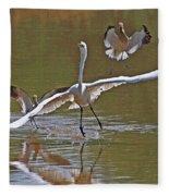 Avocets Chase Off The Egret Fleece Blanket