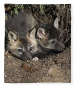 Fox-avoidance Fleece Blanket