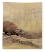 Away Quickly Fleece Blanket