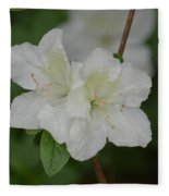 Azalea 14-2 Fleece Blanket