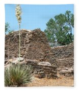 Aztec Ruins National Monument Fleece Blanket