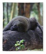 Baboon Sleeping Fleece Blanket
