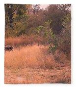 Baboons Fleece Blanket