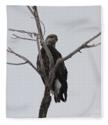 Baby Bald Eagle Fleece Blanket