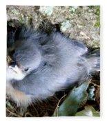 Baby Bird Learns A Lesson Fleece Blanket