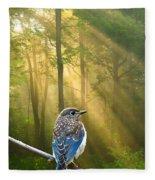 Baby Blue In Morning Fog Sunlight Fleece Blanket