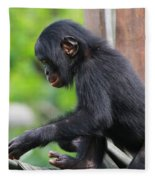 Baby Bonobo Fleece Blanket
