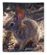 Baby Bunny Fleece Blanket