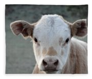 Baby Cow In Colorado Fleece Blanket