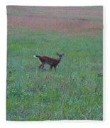Baby Deer At Sunrise Fleece Blanket