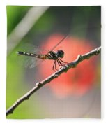 Baby Dragonfly Fleece Blanket