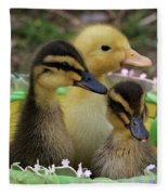 Baby Ducks Fleece Blanket