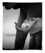 Baby Elephant Next To Cow  Fleece Blanket