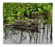 Baby Gators Fleece Blanket