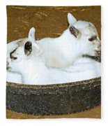 Baby Goats Lying In Food Pan Fleece Blanket