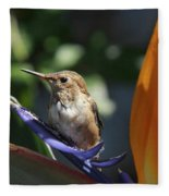 Baby Hummingbird On Flower Fleece Blanket