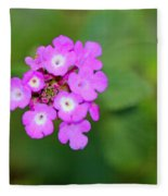Flower - Baby In Pink Fleece Blanket
