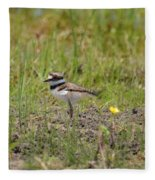 Baby Killdeer Fleece Blanket