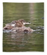 Baby Loons And Mom Fleece Blanket