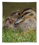 Baby Mallard Fleece Blanket