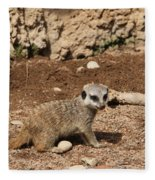 Baby Meerkat Fleece Blanket