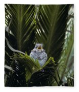 Baby Mockingbird Fleece Blanket
