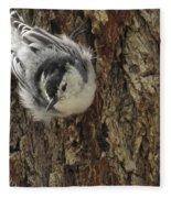 Baby Nuthatch Fleece Blanket