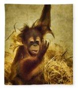 Baby Orangutan At The Denver Zoo Fleece Blanket