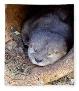Baby Otter Fleece Blanket