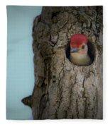 Baby Red Bellied Woodpecker Fleece Blanket