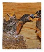 Baby Robins Feeding  An5141-14 Fleece Blanket