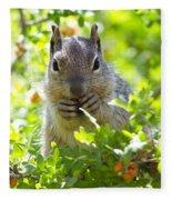 Baby Rock Squirrel  Fleece Blanket