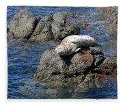Baby Sea Lion On Rock At San Juan Island Fleece Blanket