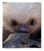 Baby Sloth 2 Fleece Blanket